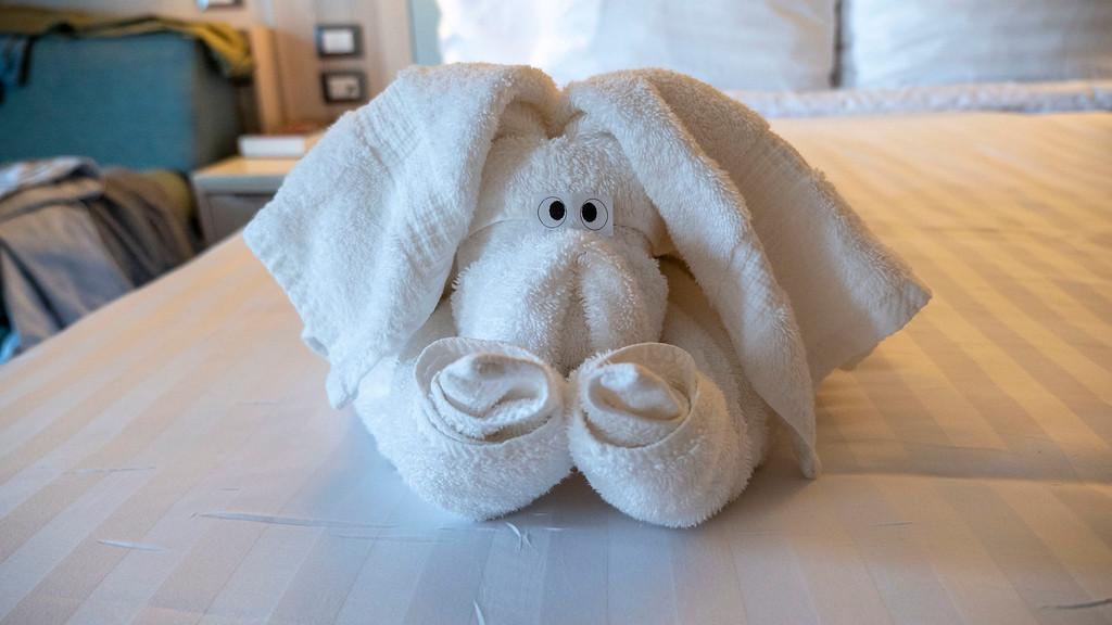 Nieuw Statendam cruise ship towel animals
