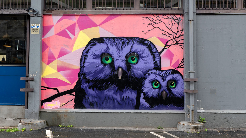 Owl street art in Oslo Norway at the cruise ship terminal