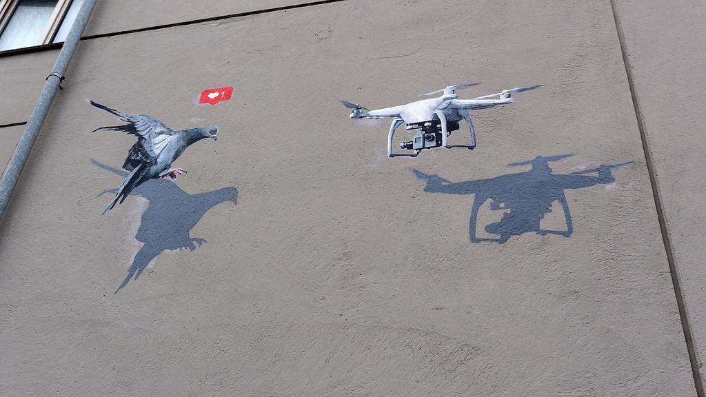 Drone and bird street art in Stavanger Norway