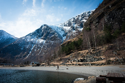 A man walks his dog near the lake, Flam, Norway, Scandinavia