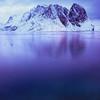Frozen Fjord I
