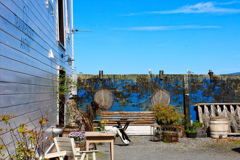 Garden detail -006 Alesund Norway