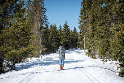 Stopping to take a photo in Nordmarka Forest, Oslo, Norway