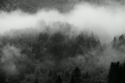 fog obscuring the hills near Odda