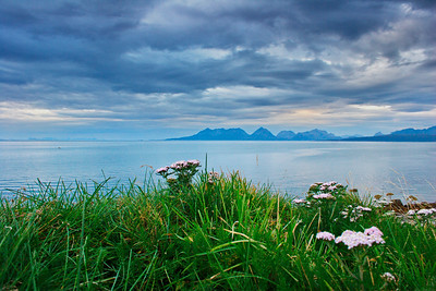 Green grass and the sea in northern Norway