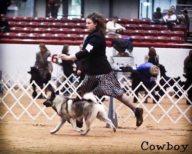 2012-01-08 Dog Show in Glen Rose TX