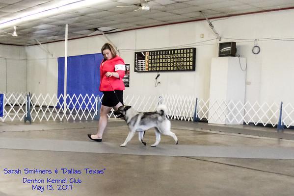 2017-05-13 Denton Dog Show