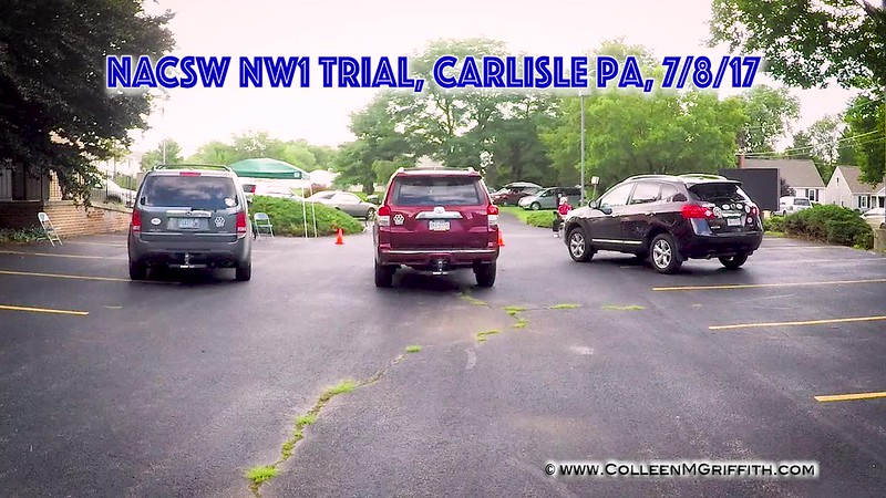 Standard License, Primary Camera Angle, NW1 Vehicle Search: Carole Allen and Trudy