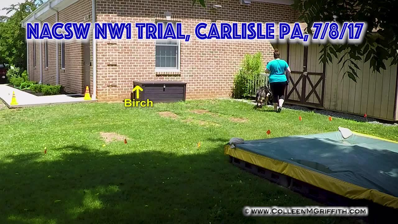 PREMIUM LICENSE, NW1 Exterior Search: Ashlea Carl and Rowan