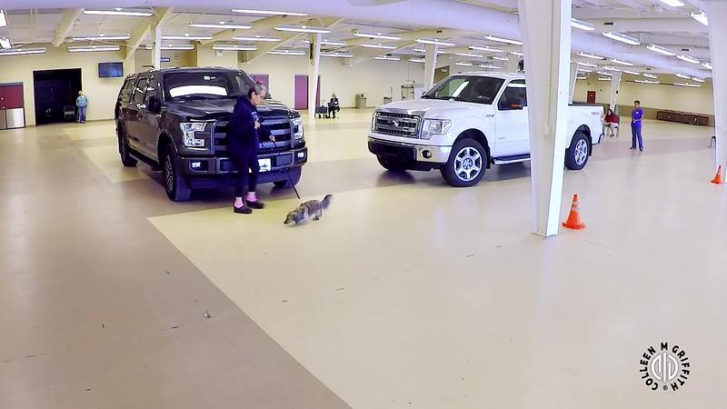 "Standard Sample Video, L1V ""Ford Trucks"" Search #1, Camera Angle 1 of 2"