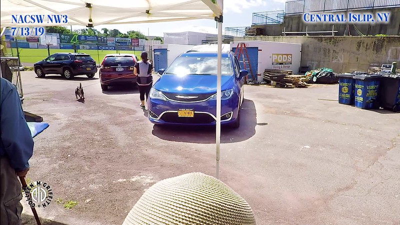 Premium Sample Video, Saturday NW3, Vehicles