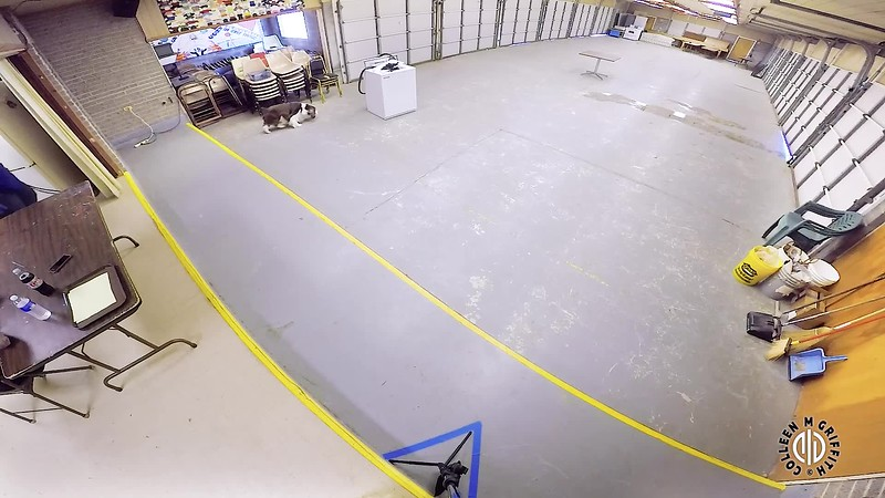 Standard Sample Video, Elite Activity Center, Camera Angle 2 of 3