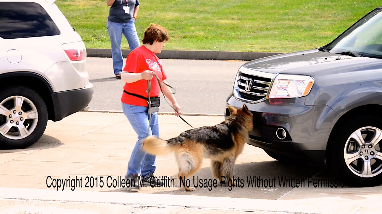 NW1 Vehicles, Kathleen Paul and Nalla