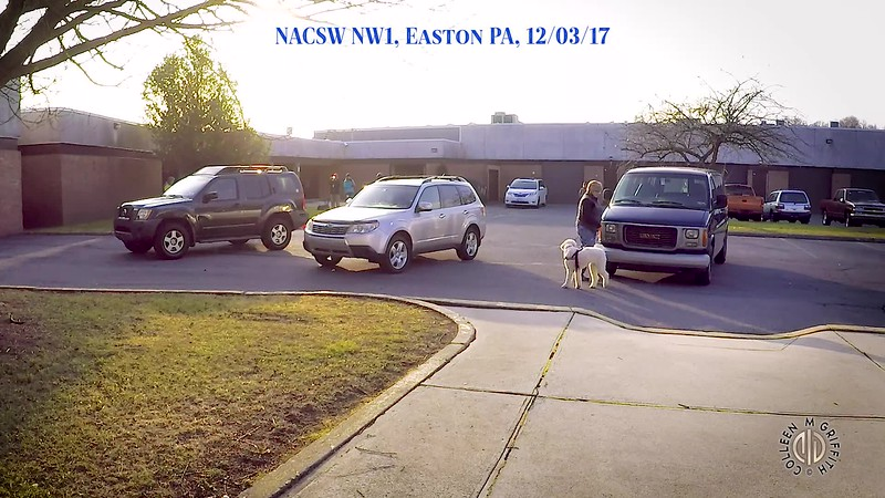 Standard Video License Sample, Camera Angle 2 of 2, NW1 Vehicles