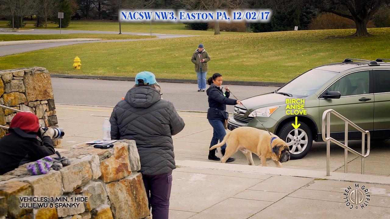 Premium Video License Sample: NW3 Vehicles