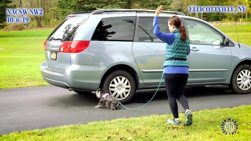 NW2 Premium Sample Video, Vehicles