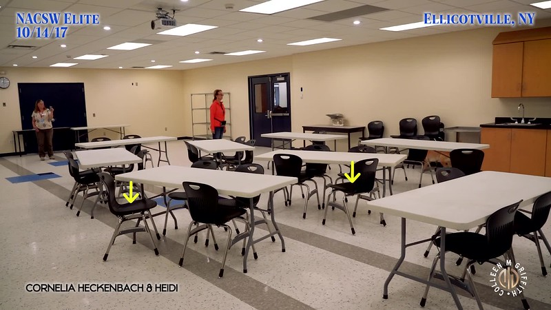 Premium License, Multipurpose Room Search (4)
