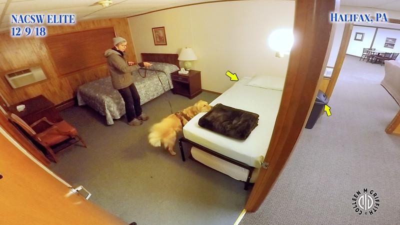 "Search Area #4 ""Dorm Hall"" Premium Sample Video, Halifax Elite NW Trial"