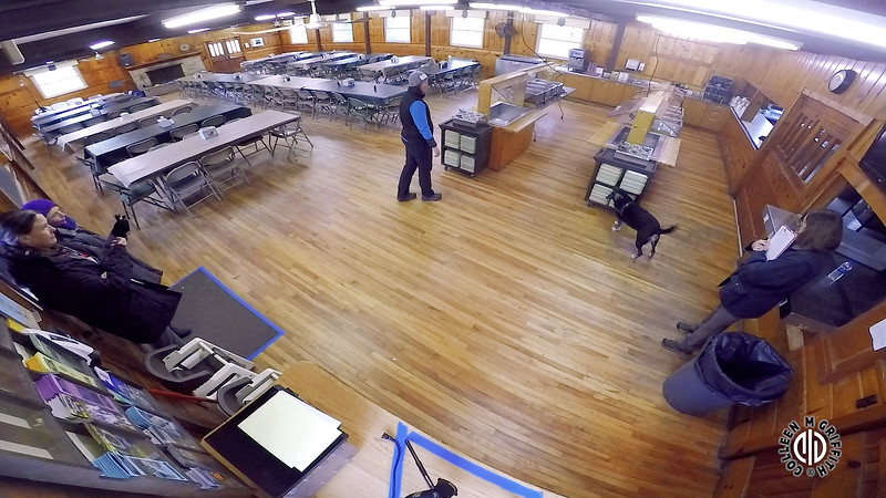 "Search Area #1 ""Dining Hall"" Standard Sample Video, Camera Angle 1 of 2, Halifax Elite NW Trial"