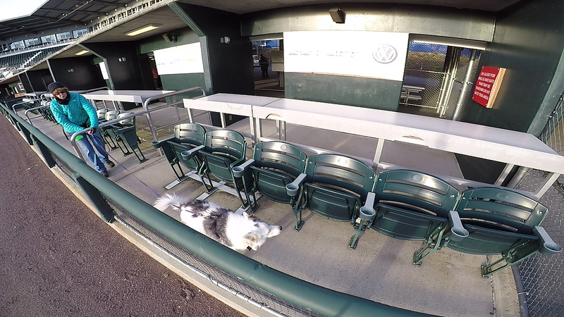 "Elite Search Area 5: ""Dugout Suites"", Camera Angle 2 of 2, Standard Sample Video"