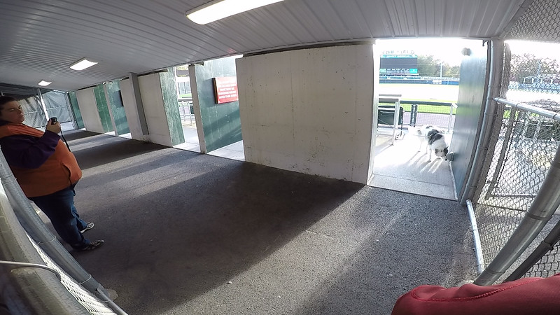"""Elite Search Area 5: """"Dugout Suites"""", Camera Angle 1 of 2, Standard Sample Video"""
