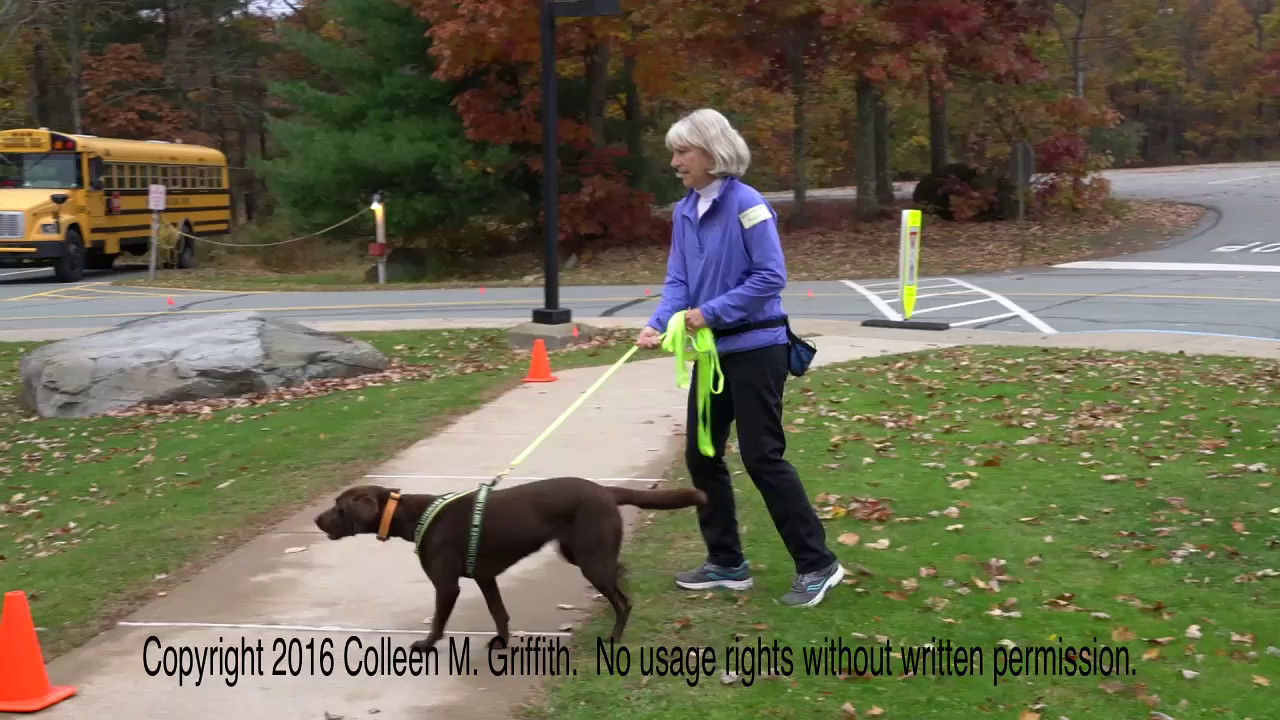 Leslie Wharton and Layla, Exterior, 30 October 2016, Hawley PA NW3 Trial