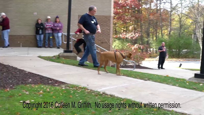 John Joyce and Sadie, 29 October 2016, Hawley PA NW3 Trial