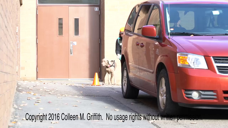 Kathryn Woods and Grace, 29 October 2016, Hawley PA NW3 Trial