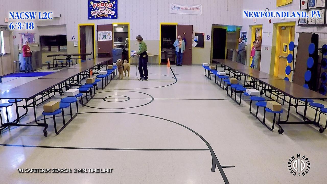 Standard Sample Video, #1 Cafeteria Search, L2C