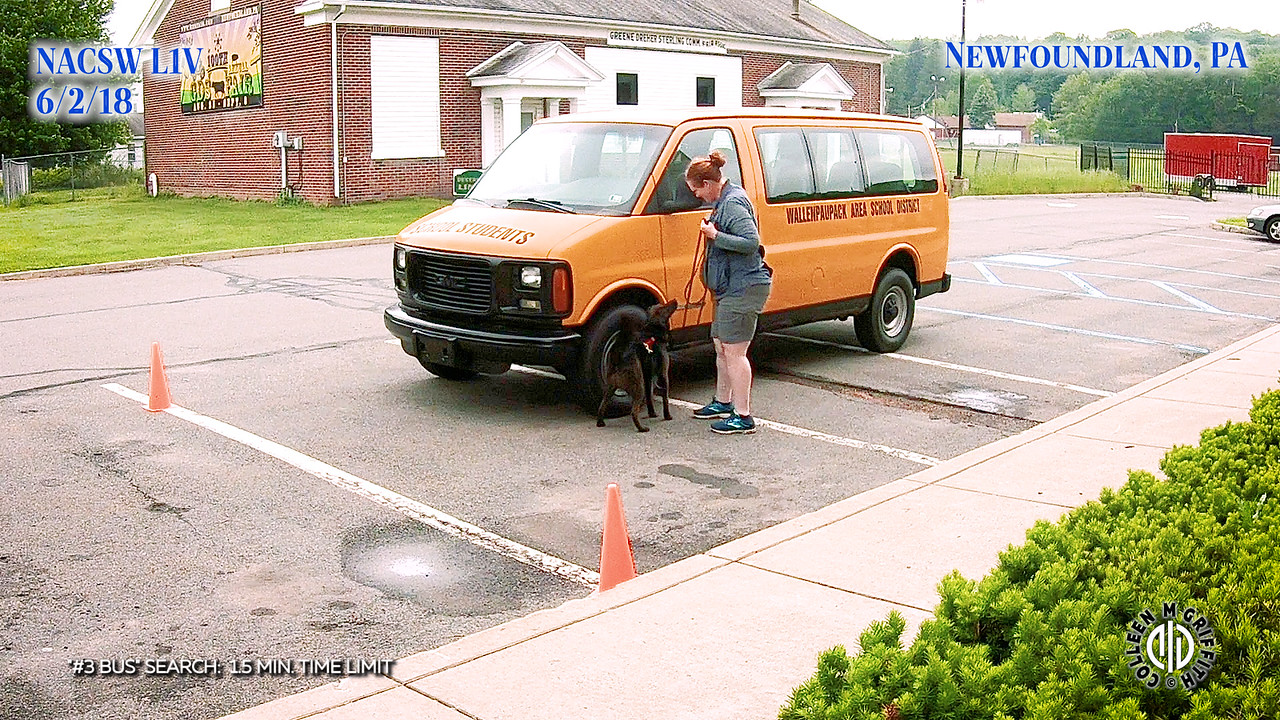 Standard Sample Video, #3 Bus Search, L1V