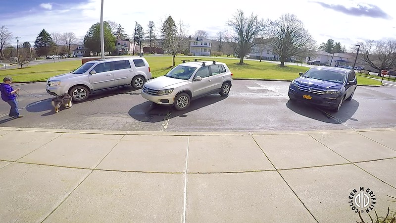 "Standard Sample Video, L2V Search Area #4 ""Soccer Moms"", Camera Angle 1 of 2"