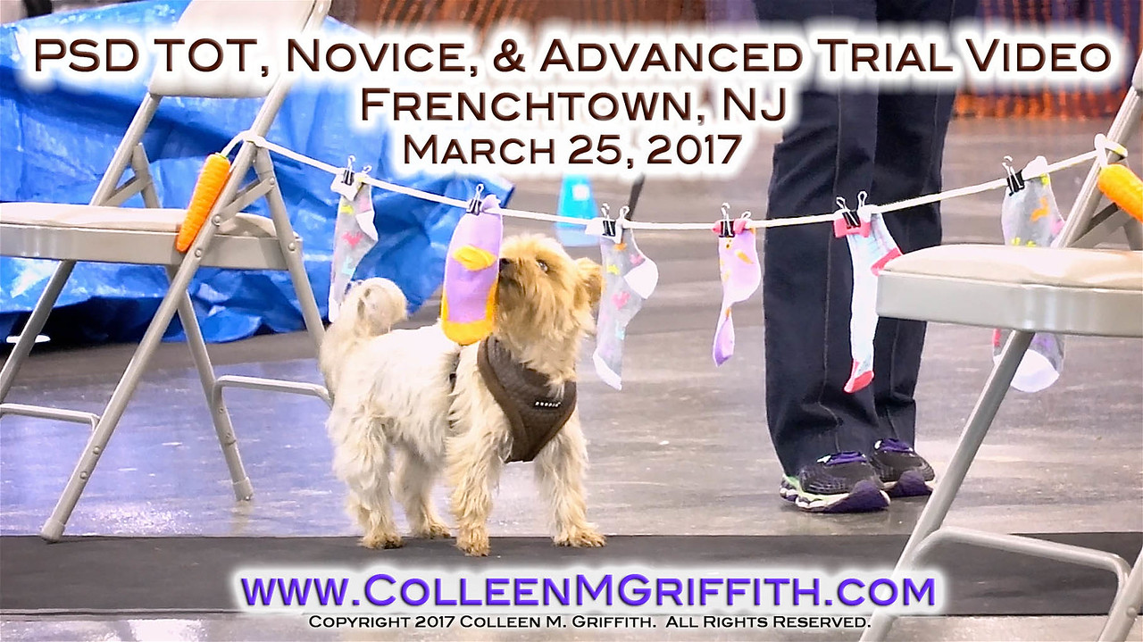 Zoe_PSDFrenchtown_Advert