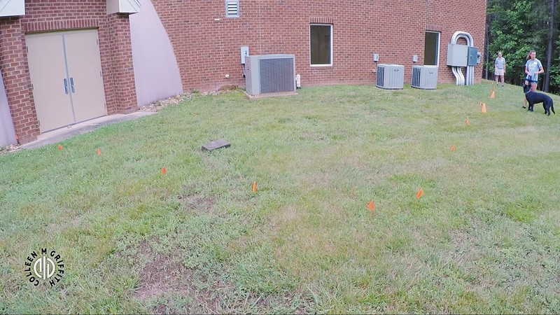 Standard Sample Video: Exterior, Camera Angle 1 of 2