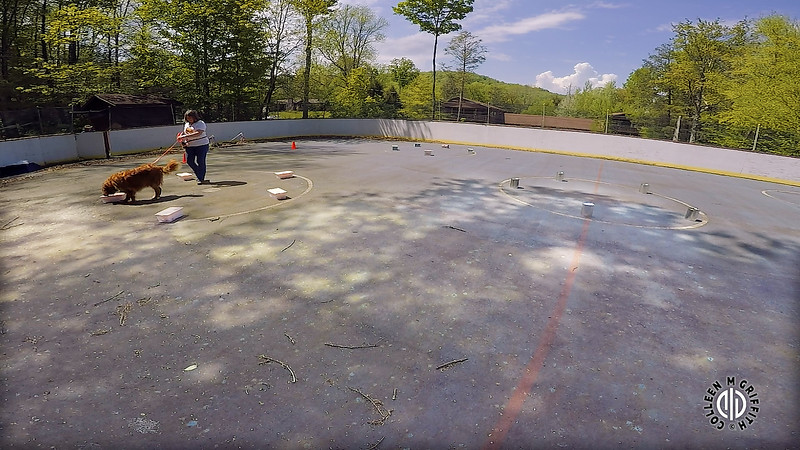 "Standard Sample Video, L3C Search Area #2 ""Hockey Rink"""
