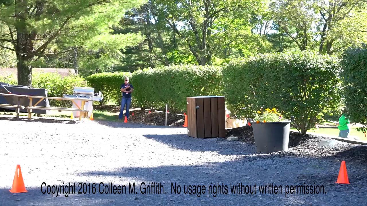 Christine Civil and & Siri, NW2 Exterior, Sept 25 2016
