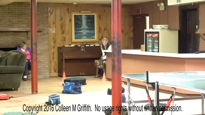 Marlene Corcoran & Bug, 3rd Place Containers, 1st Place Overall, NW3 Trout Run, Video by Colleen M. Griffith