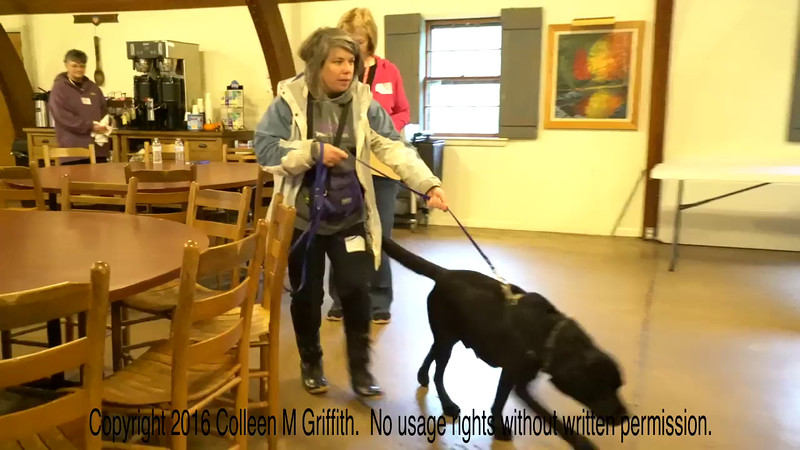 Heidi Meiner and Boomer, L1C at Trout Run, Video by Colleen M. Griffith