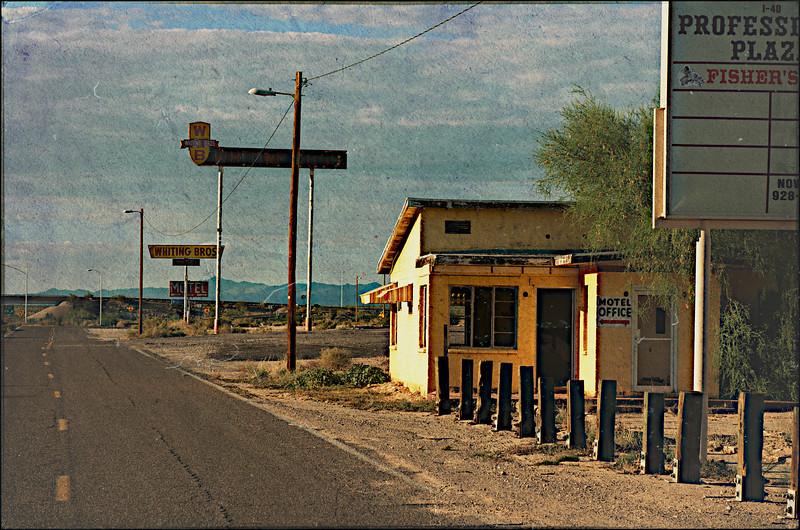 Abandoned Yucca