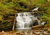 Ricketts Glen State Park<br /> Conestoga Falls