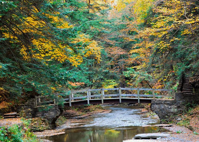 101510 <br /> Bridge Over Creek at Buttermilk Falls State Park