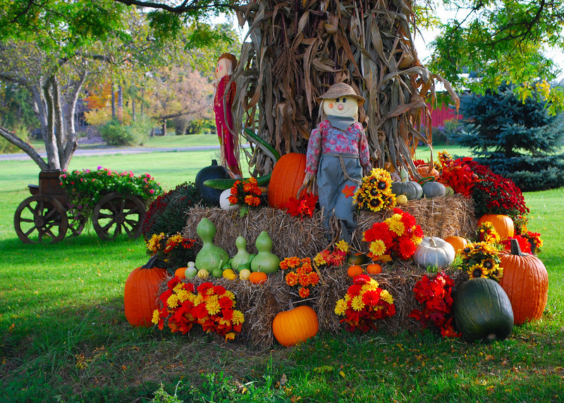 101210<br /> Fall Roadside Display<br /> <br /> I saw this driving above Cayuga Lake.<br /> This is in the front lawn of a storage company.