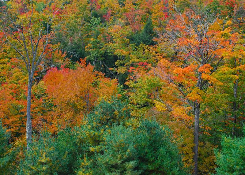 093010<br /> Adirondack Overlook