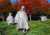 111110<br /> Veteran's Day<br /> Korean War Memorial<br /> Washington, DC