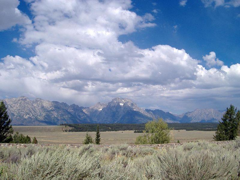 Grant Teton Nat'l Park, Wyoming.
