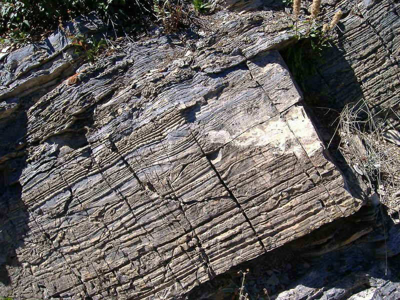 Interesting rocks along Bertha Lake Trail, Waterton Lakes National Park, Alberta.