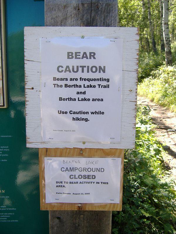 Bear warnings at Bertha Lake trail, Waterton Lakes National Park, Alberta.