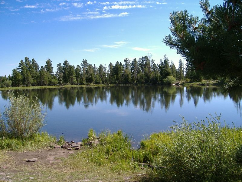 Mt. Lena, 9755 ft in elevation, south of Flaming Gorge Rec Area.  <br /> We stopped after riding on several miles of fresh chip-seal to pick rocks out of our tire treads and found this natural pond.