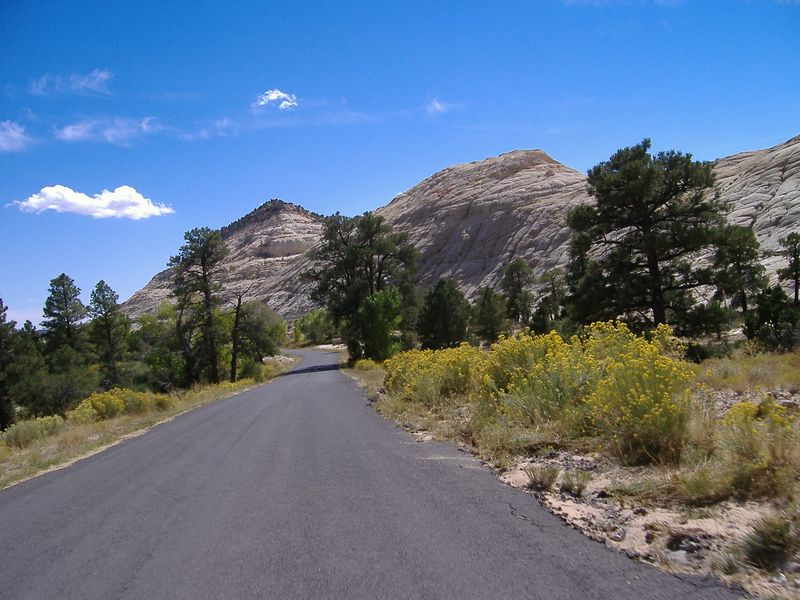 Along the Burr Trail, a few miles along from Boulder.  After about 5 miles the road descends into a red rock slot canyon.