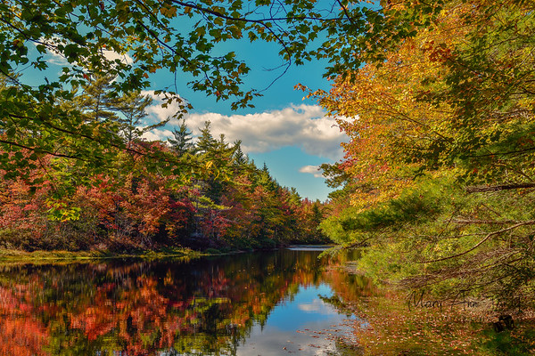Wells Maine in the Fall