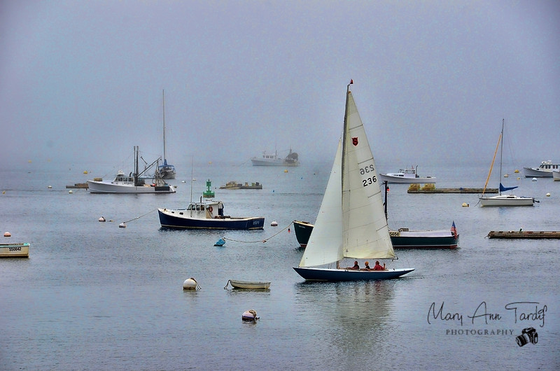 Sailing into the Harbor, Bristol Maine